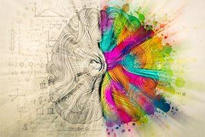 Brain Power Series